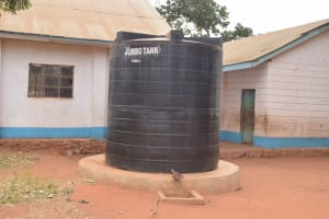 The Water Project: Kamulalani Primary School -  Water Storage Tank