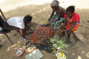 The Water Project: Mummy Ann's Pre-Primary School -  Sorting Palm Fruit