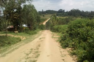 The Water Project: Eshiasuli Community, Eshiasuli Spring -  Road Into The Village