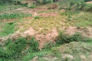 The Water Project: Shihingo Community, Inzuka Spring -  Community Farms
