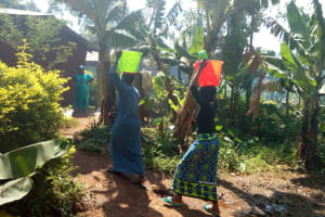 The Water Project: Lutonyi Community, Lutomia Spring -  Carrying Water