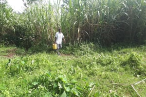 The Water Project: Kambiri Community, Sachita Spring -  Carrying Water Home