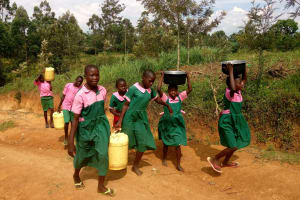 The Water Project: Ebukhayi Primary School -  Carrying Water