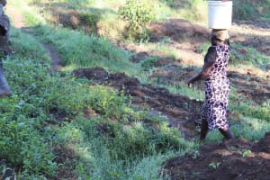The Water Project: Bukhakunga Community, Mukomari Spring -  Carrying Water