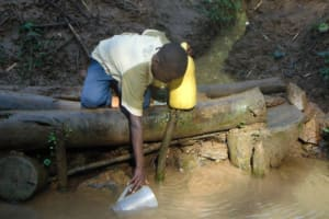 The Water Project: Shamiloli Community, Kwasasala Spring -  Fetching Water