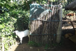 The Water Project: Bungaya Community, Charles Khainga Spring -  Latrine
