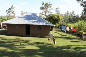 The Water Project: Bukhakunga Community, Mukomari Spring -  Household