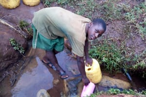 The Water Project: Kitulu Community, Kiduve Spring -  Fetching Water