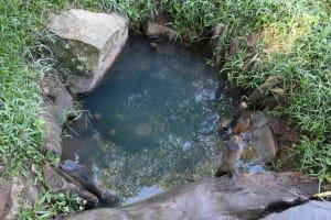 The Water Project: Bukhakunga Community, Mukomari Spring -  Current Water Source