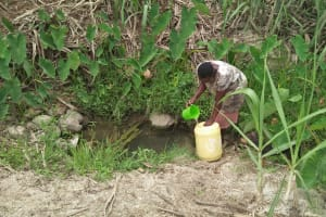 The Water Project: Tumaini Community, Ndombi Spring -  Fetching Water