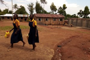 The Water Project: Friends Primary School Givogi -  Leaving To Fetch Water