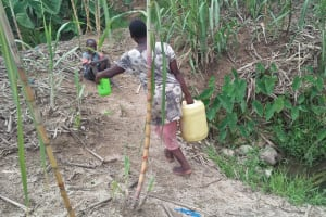 The Water Project: Tumaini Community, Ndombi Spring -  Carrying Water