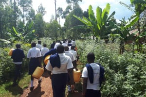 The Water Project: Ikumba Secondary School -  The Path To The Spring