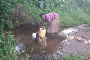 The Water Project: Kambiri Community, Sachita Spring -  Dorcas Ayuma
