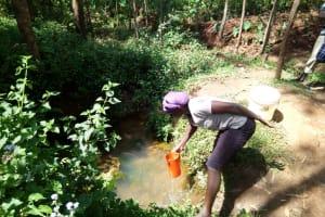 The Water Project: Hirumbi Community, Khalembi Spring -  Fetching Water