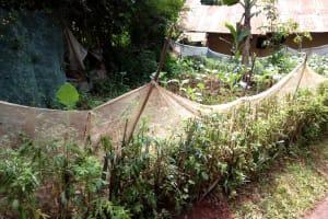 The Water Project: Mushina Community, Shikuku Spring -  Garden