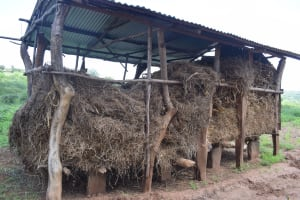 The Water Project: Maluvyu Community F -  Granary