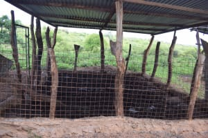 The Water Project: Maluvyu Community F -  Inside Animal Pen