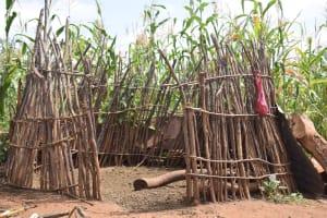 The Water Project: Kangalu Community -  Cattle Pen