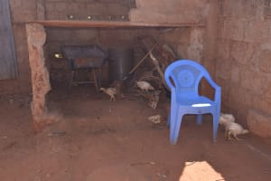 The Water Project: Mukuku Community A -  Chickens