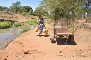 The Water Project: Kaukuswi Community A -  Bringing Containers To Collect Water
