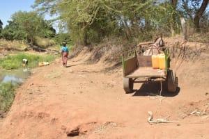 The Water Project: Kaukuswi Community A -  Donkey Hauls Water