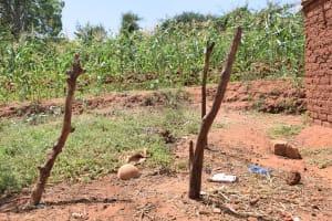 The Water Project: Kangalu Community A -  Livestock Shelter