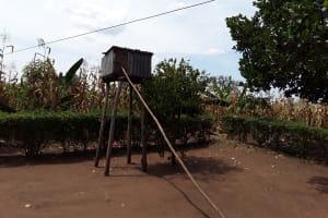 The Water Project: Kimigi Kyamatama Community -  Chicken Coop