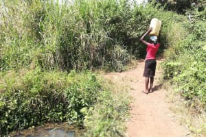 The Water Project: Kimigi Kyamatama Community -  Returning Home With Water