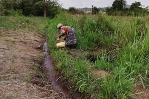 The Water Project: Kikube Nyabubale Community -  Collecting Water At The Stream