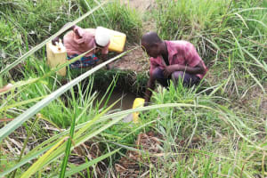 The Water Project: Kikube Nyabubale Community -  Filling Containers In Open Source