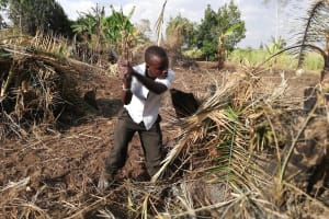 The Water Project:  Clearing And Reparing Cabbage Garden