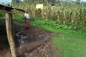 The Water Project: Sasala Community, Kasit Spring -  Maize Farm