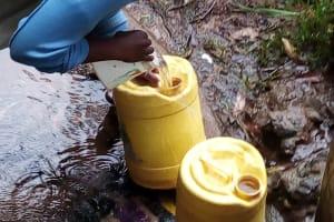 The Water Project: Bumira Community, Madegwa Spring -  Fetching Water