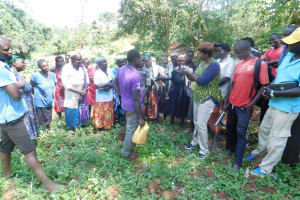 The Water Project: Shitsuvio Community, Shihevi Spring -  Handwashing Training