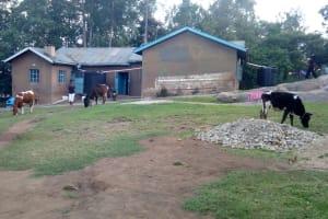 The Water Project: Shikangania Community, Abungana Spring -  Orphanage