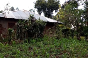 The Water Project: Bumira Community, Madegwa Spring -  Garden