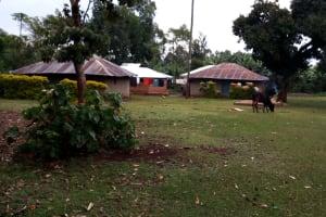 The Water Project: Shivembe Community, Murumbi Spring -  Household