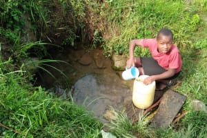 The Water Project: Sasala Community, Kasit Spring -  Fetching Water