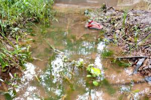 The Water Project: Bumavi Community, Joseph Njajula Spring -  Current Water Source