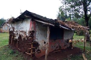 The Water Project: Kisasi Community, Edward Sabwa Spring -  Household