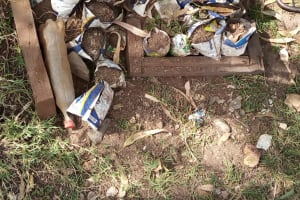 The Water Project: Shamakhokho Community, Imbai Spring -  Tree Nursery