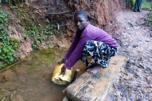 The Water Project: Bumira Community, Imbwaga Spring -  Fetching Water