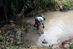 The Water Project: Kipchorwa Primary School -  Fetching Water