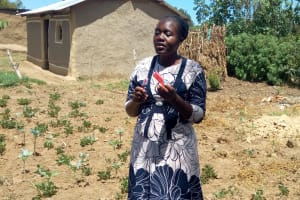 The Water Project: Lukova Community, Wasike Spring -  Dental Hygiene Training