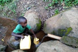 The Water Project: Chepnonochi Community, Shikati Spring -  Fetching Water