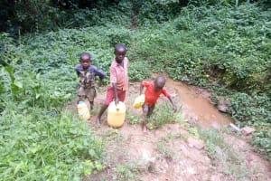 The Water Project: Kisasi Community, Edward Sabwa Spring -  Fetching Water