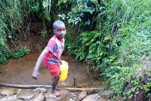 The Water Project: Shamakhokho Community, Imbai Spring -  Fetching Water