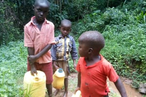 The Water Project: Kisasi Community, Edward Sabwa Spring -  Carrying Water