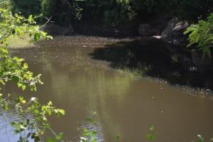 The Water Project: Wamwathi Community -  Seasonal Open Water Source